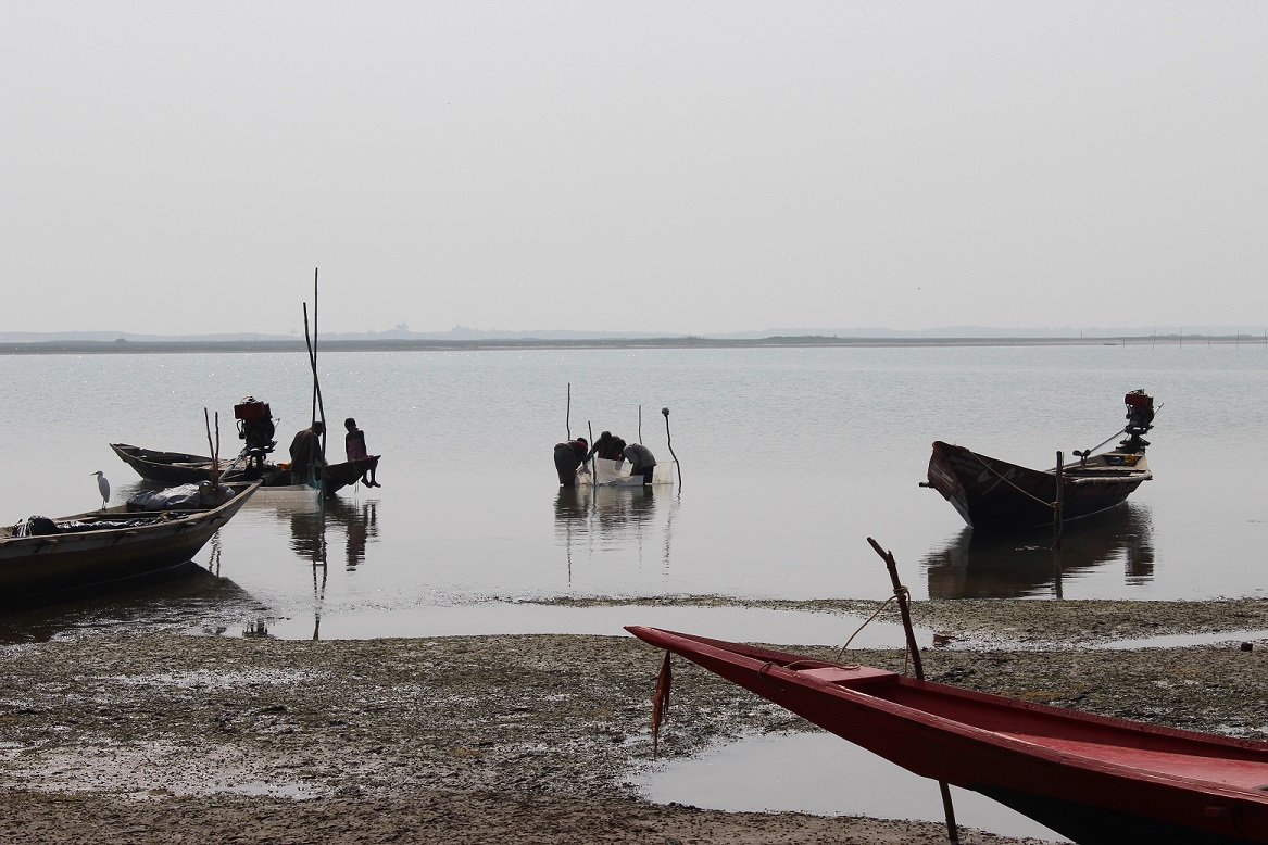 NEWS | What do we know about adaptation in the Volta, Mahanadi and Ganges-Brahmaputra-Meghna deltas?